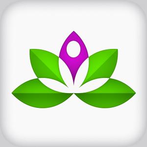 modern lotus